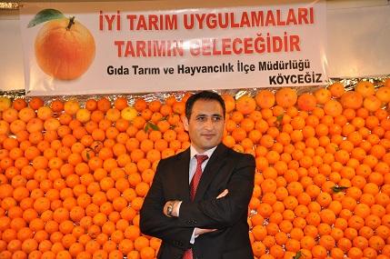 Köyceğiz Portakalı Türkiye'nin en iyi portakalı