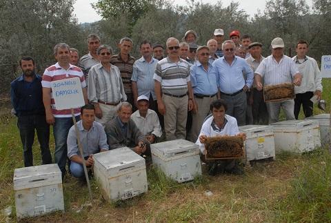 Organik arıcılık ve bal orman proje başladı