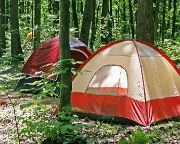 Ücretsiz Doğa Kampları kayıtları başladı