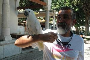 Papağanına 2 gün sonra kavuştu