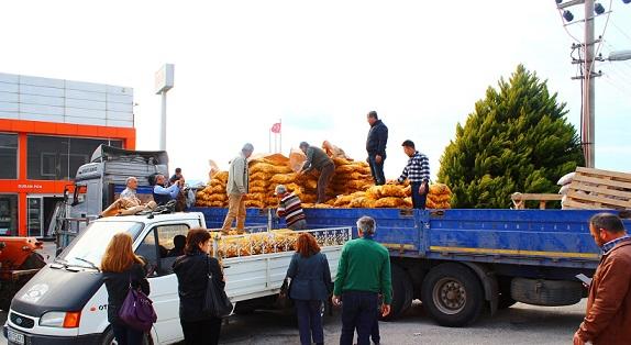 Patates üretecisine Büyükşehir desteği