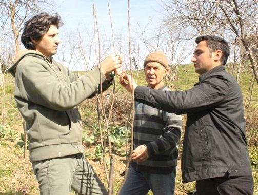 Genç çiftçilere hibe desteği