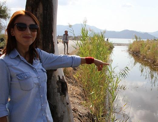 Fethiye'de balıklar telef oldu