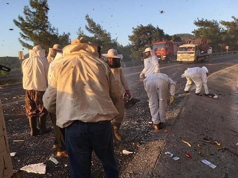 Arı kamyonu kaza yaptı: 2 yaralı