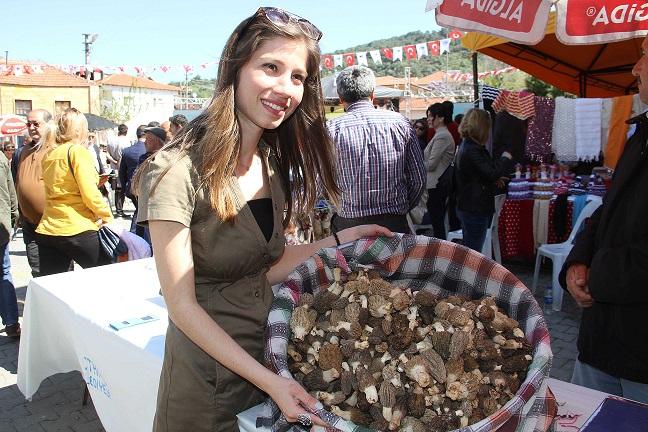 Kuzugöbeği Mantarı Festivali başladı