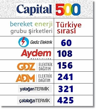 Bereket Enerji'nin 6 şirketi ilk 500 içinde