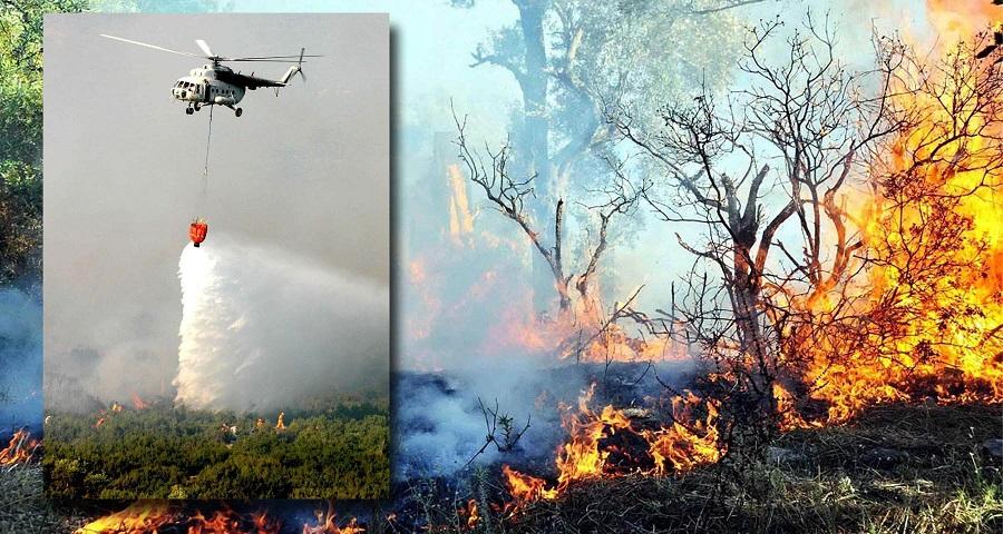 Muğla'da 2 bin 734 orman yangını çıktı