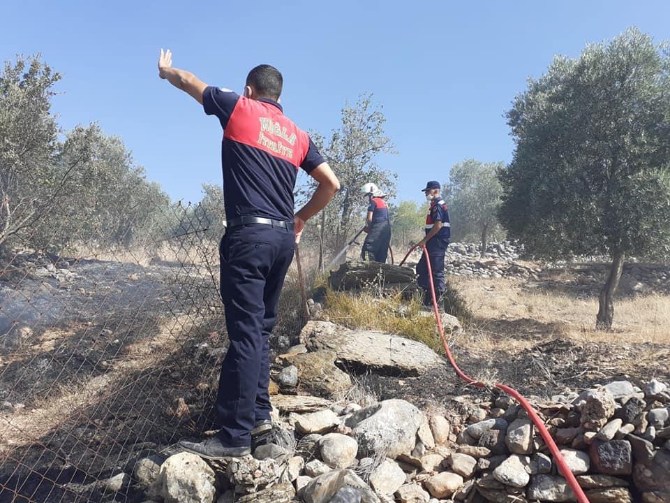 Yangın, ormana sıçramadan söndürüldü