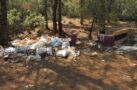 Ormanlık alan çöplüğe döndü