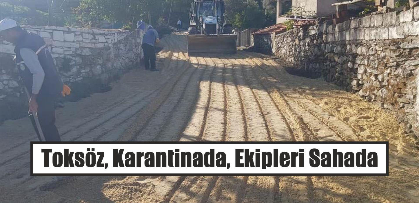 Toksöz, Karantinada, Ekipleri Sahada