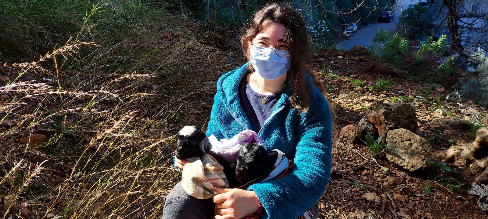 Muğla'da kayalıklarda mahsur kalan keçi ve yeni doğan yavruları kurtarıldı