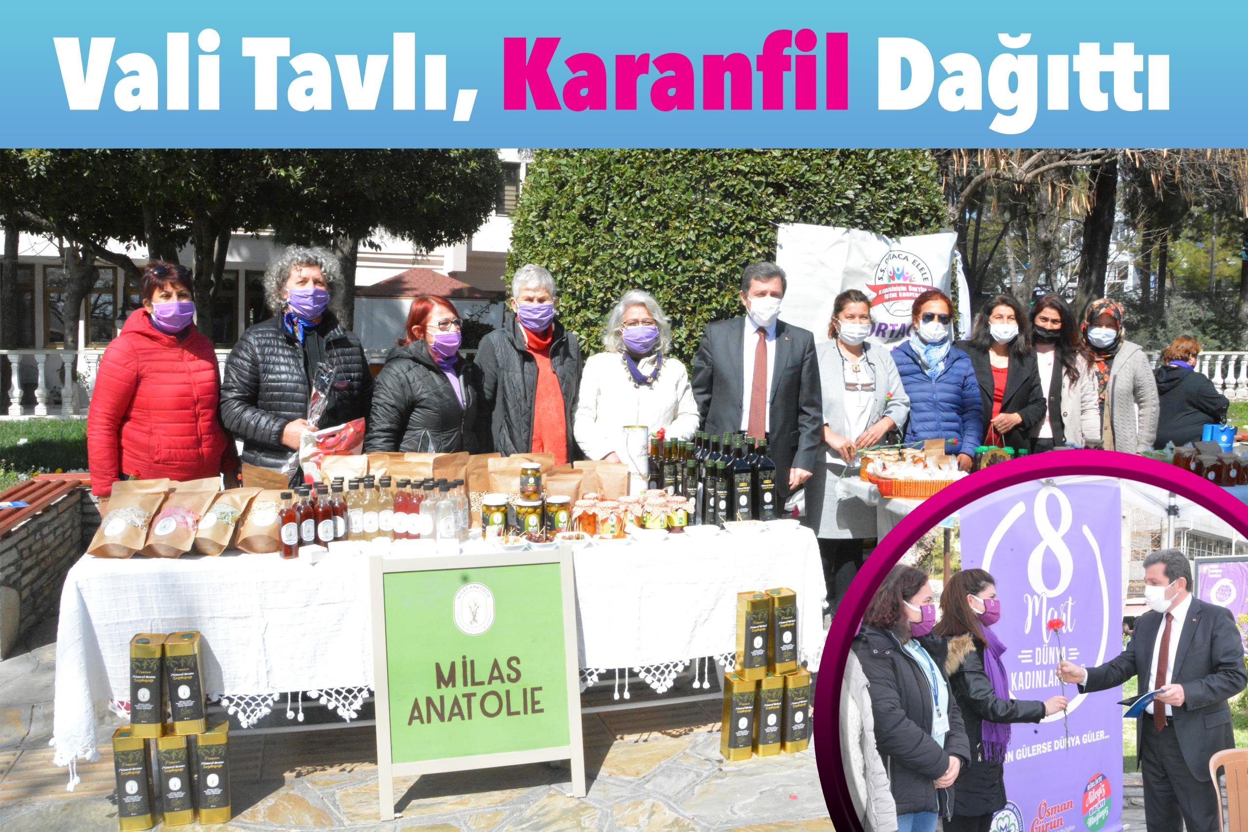 Vali Tavlı, Karanfil Dağıttı