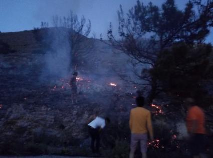 Muğla'da makilik alanda çıkan yangın söndürüldü