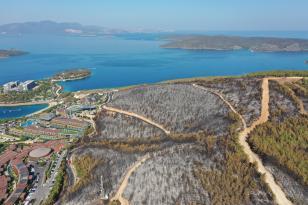 zarar gören 80 hektarlık ormanlık alan havadan görüntülendi