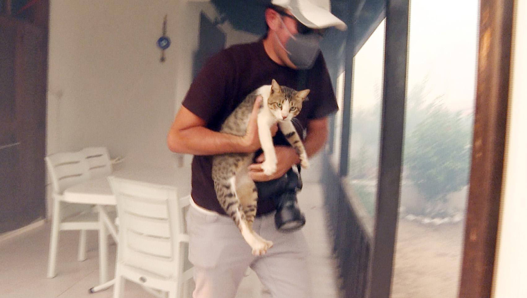 Yangında mahsur kalan kediyi gazeteciler kurtardı