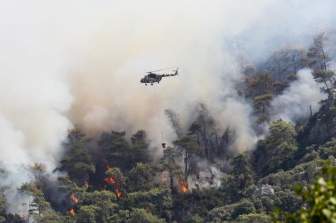Marmaris'teki orman yangınını söndürme çalışmaları devam ediyor